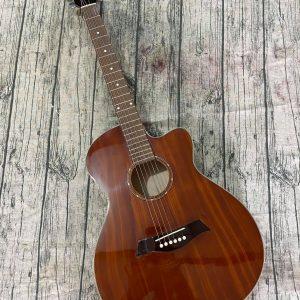 Guitar Acoustic  E90F